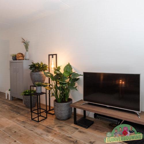 De Grote Tuinverbouwing woonkamer make-over met infrarood verwarming paneel
